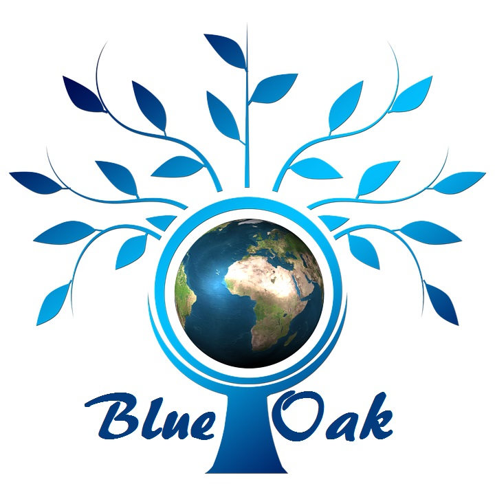 Blue Oak Software Solutions